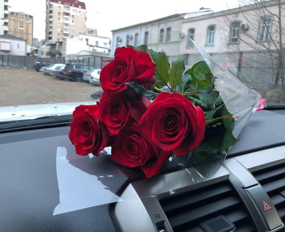 технологическим фото роз в машине на стекле нас можете