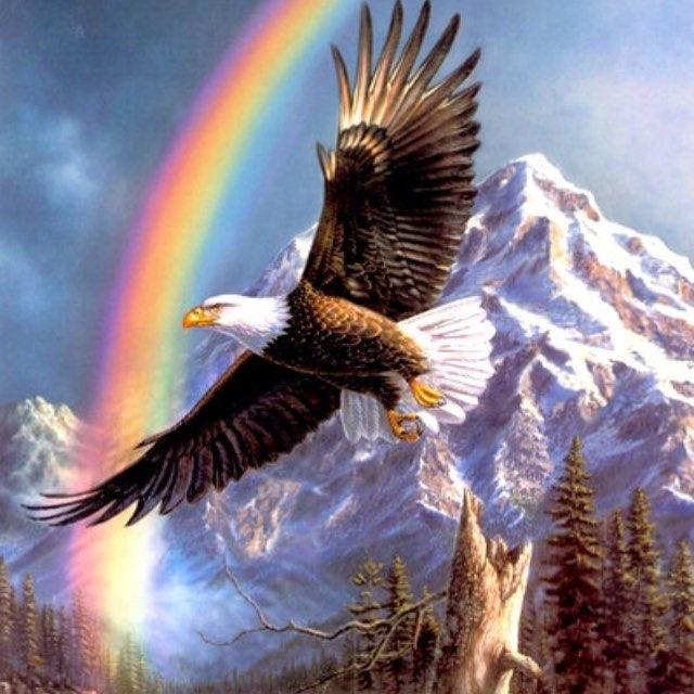 имя поздравление с орел америке