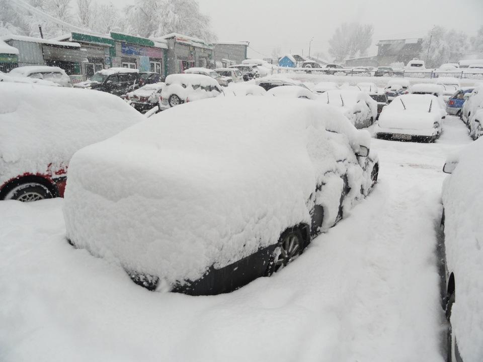 Картинки как много снега навалило правда