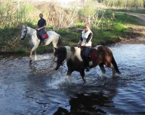 Весна настает пора чередования коней