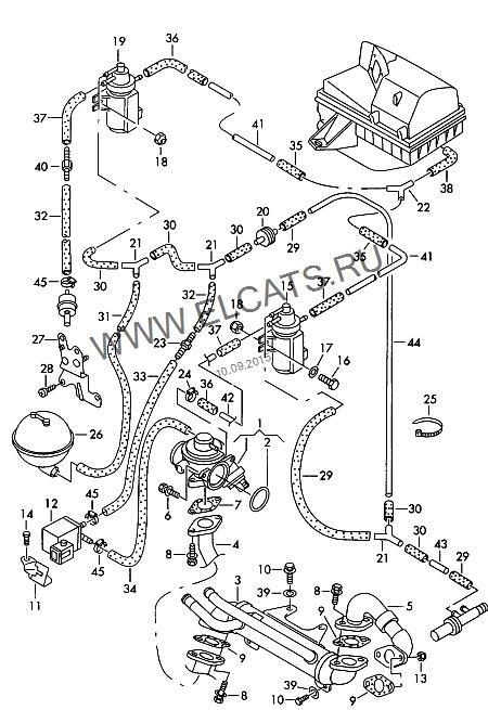 All About Vacuum Routing Diagram Tdi Amp Diesel Forum Ukmkivs