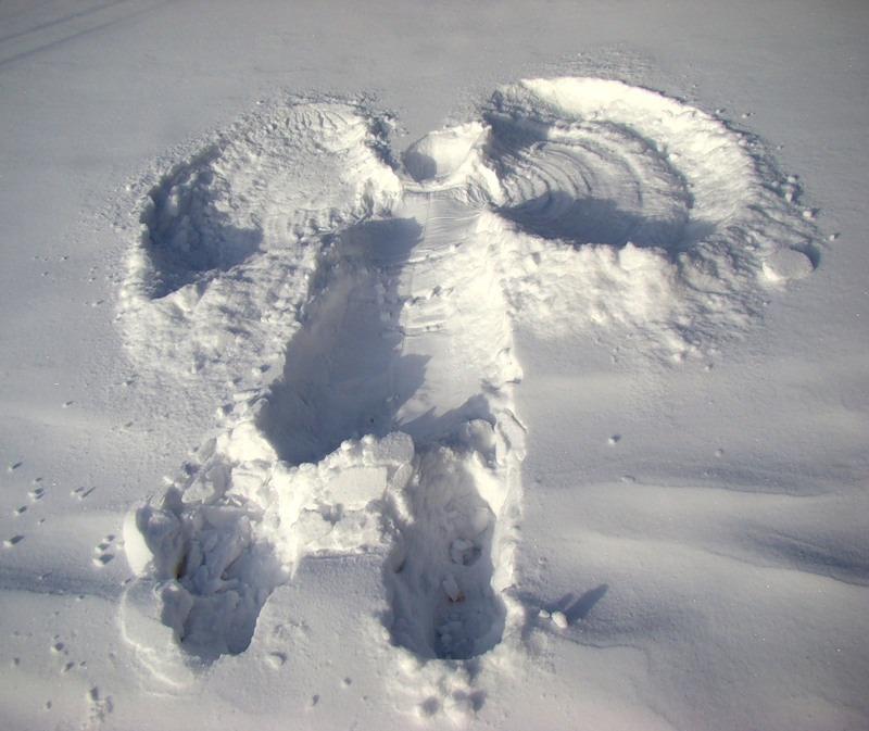 Снегоходы стелс картинки тоже
