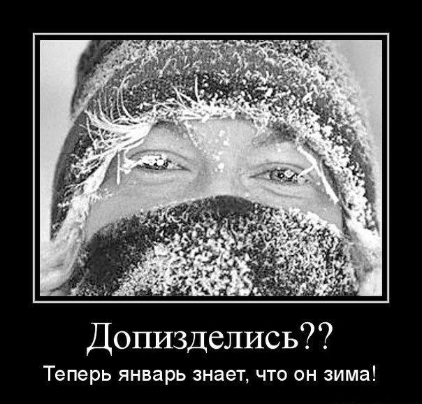 Прикольные картинке про мороз