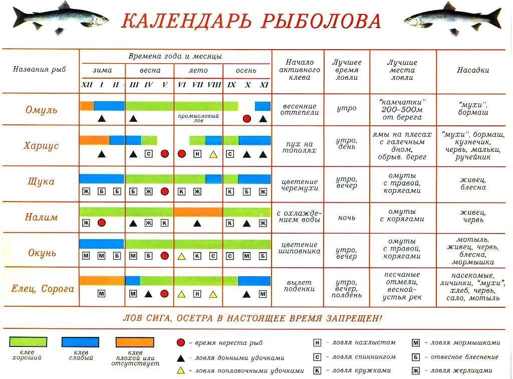Прогноз клёва рыбы в селе Песчаное Озеро