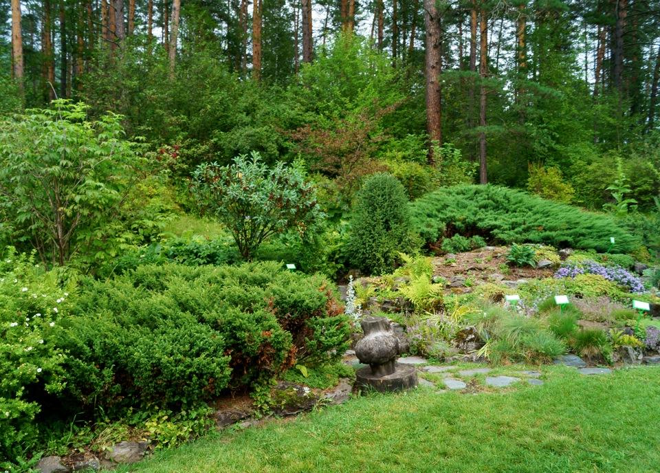 что горно алтайский ботанический сад фото приводит