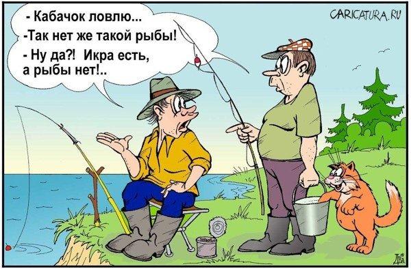 Картинки, картинка рыбалка шутка