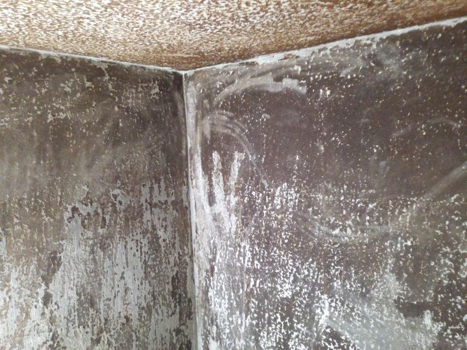 23c1fe2s 960 - Чем покрасить подвал в гараже