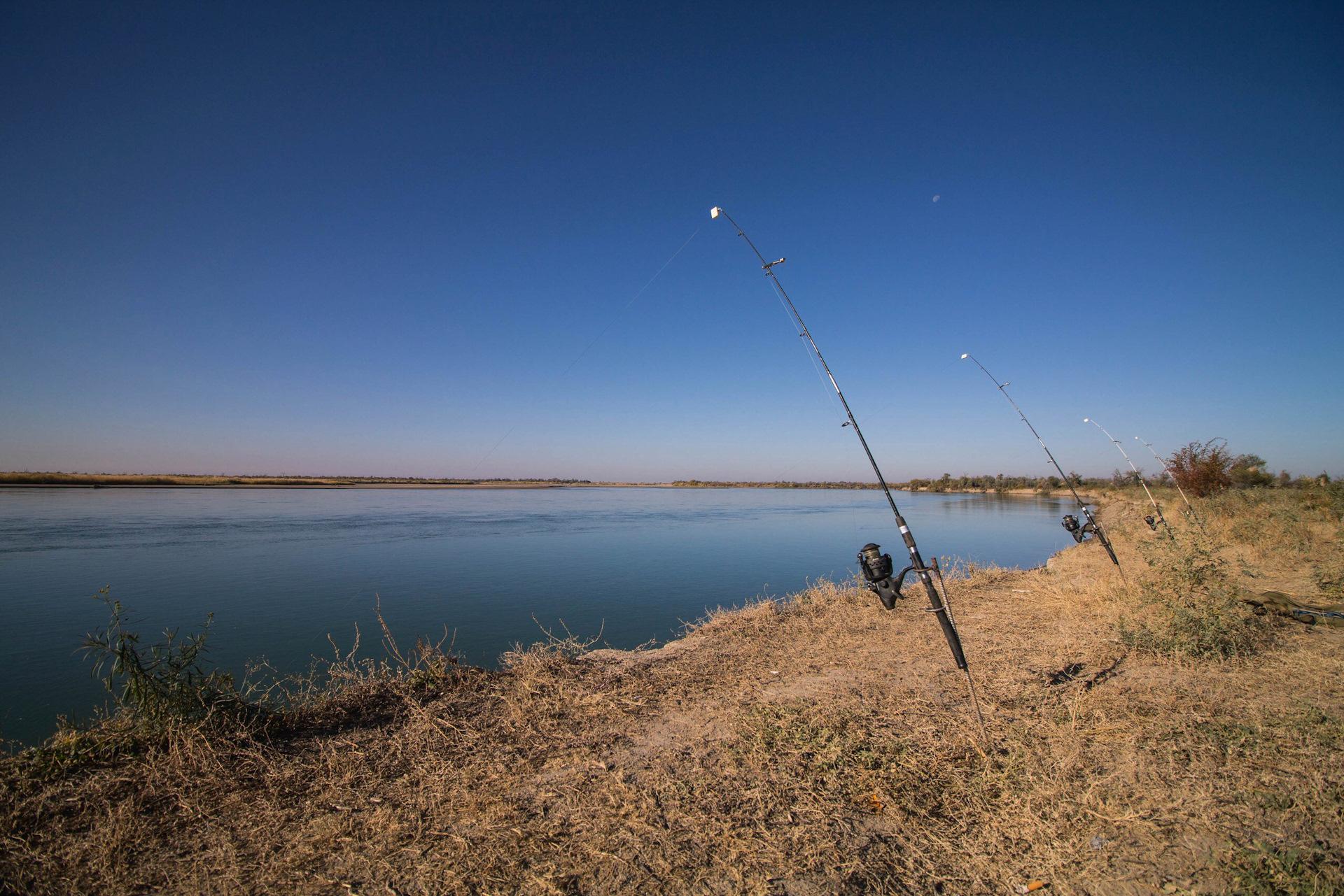 выставка охота и рыбалка в крокусе экспо