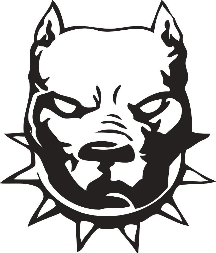 Angry pitbull dog drawing