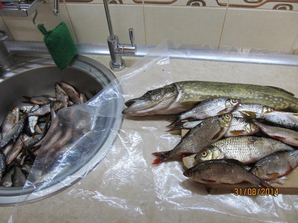 каша на рыбалку