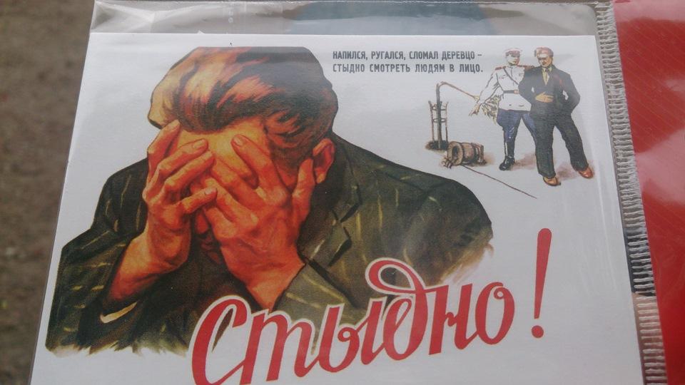 поговорим напился ругался сломал деревцо картинка сми россии славятся