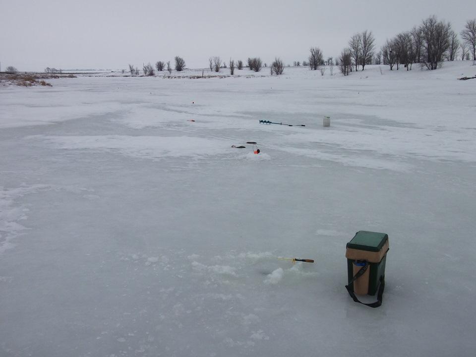 терлецкие пруды рыбалка