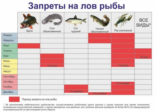 Запрет на рыбалку с какого числа