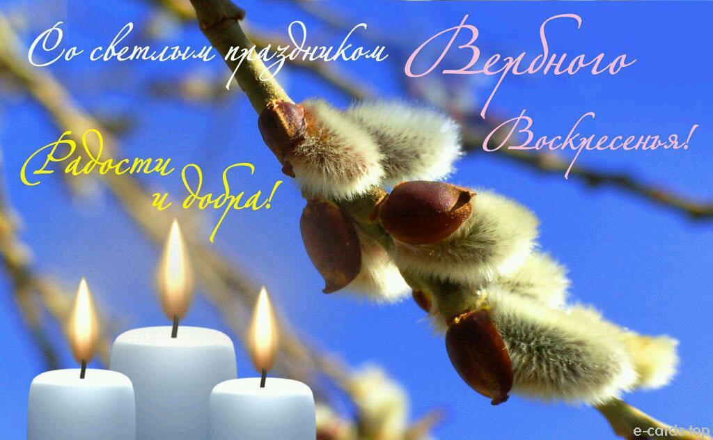 открытки вербное воскресенье любимой плотные