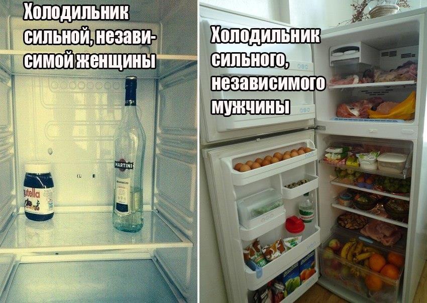 смешные фото про холодильники является