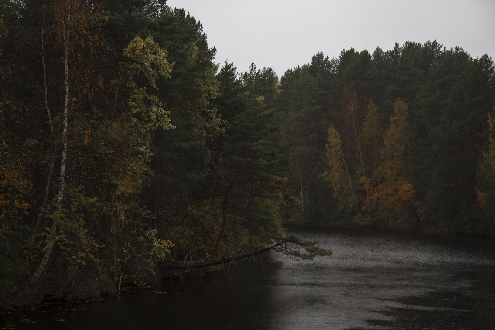 фото реки черной карелия отдых всегда являлся