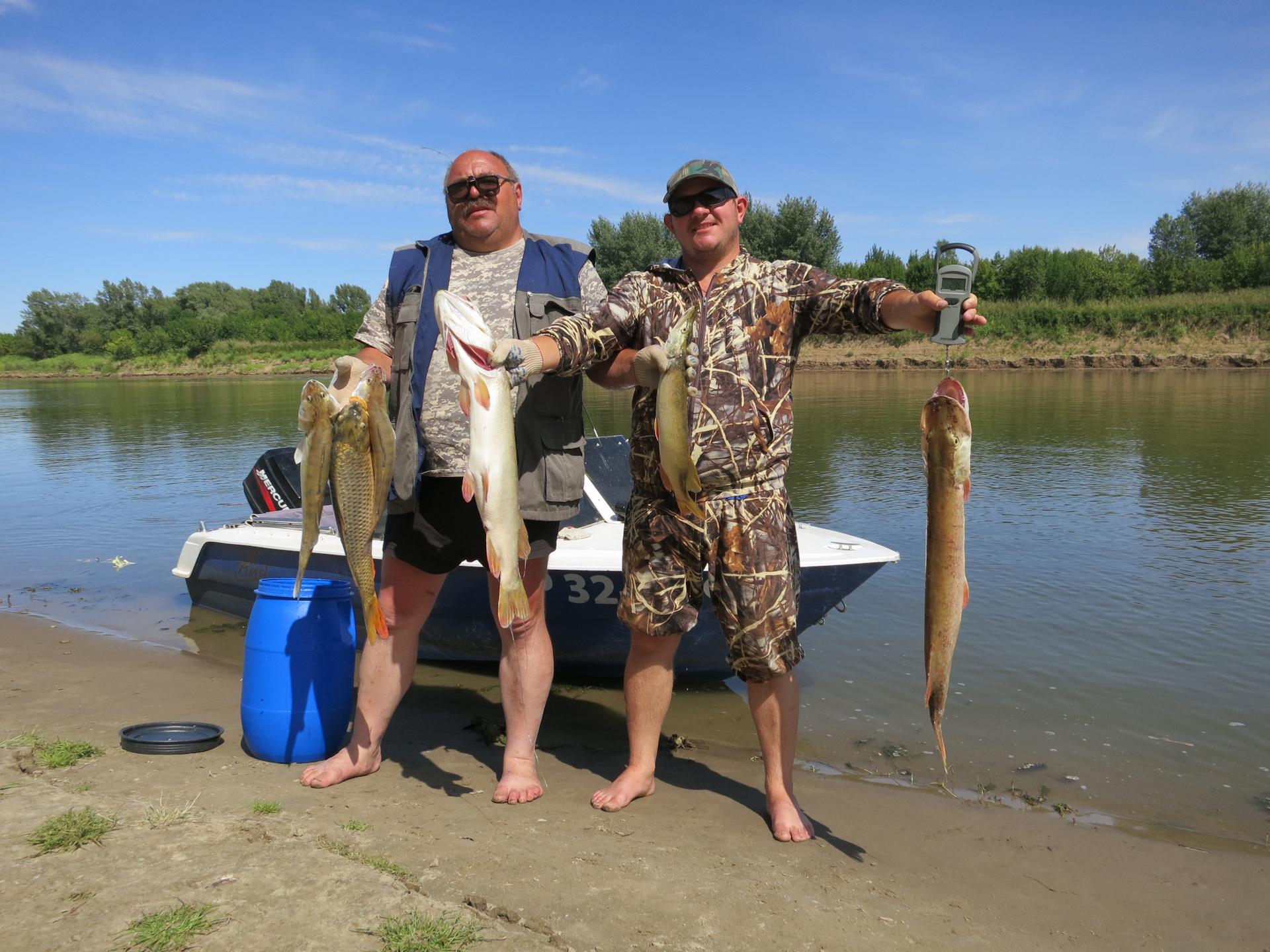 Рыбалка на волге верхней