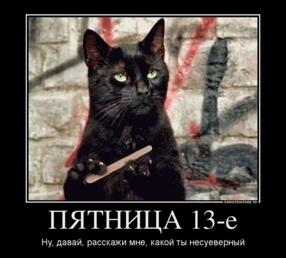 гифка черная кошка пилит ногти обычно предупреждают водителей