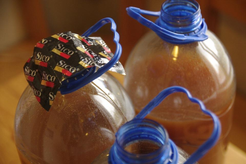 Как сделать домашнее вино из слива - Danetti.Ru