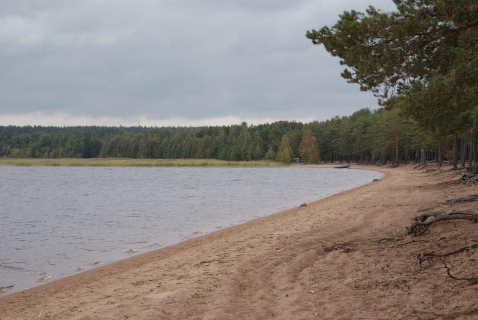 Озеро глубокое рыбалка ленинградская область