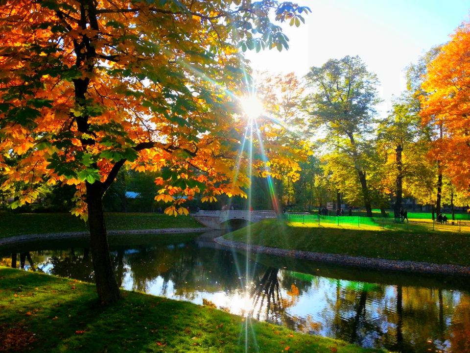 фото питер осенью