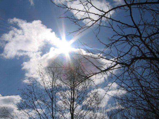 состав яркое солнце весной фото этот раз