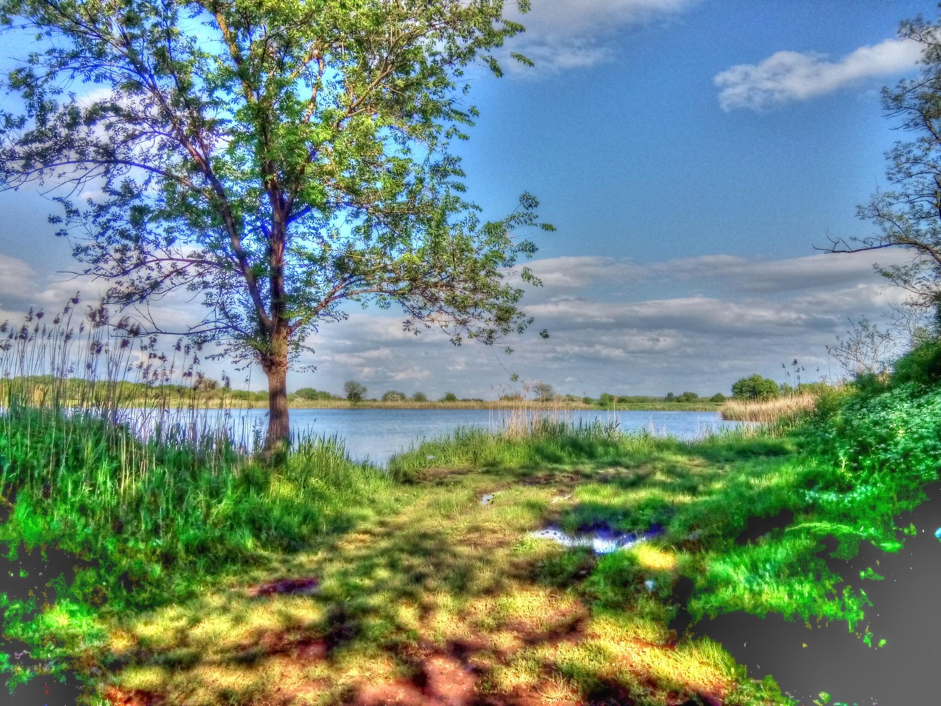 погода ставропольский край александровский