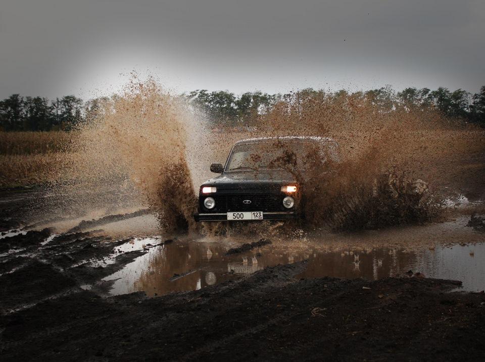 она реализовывает фото грязевая нива милая