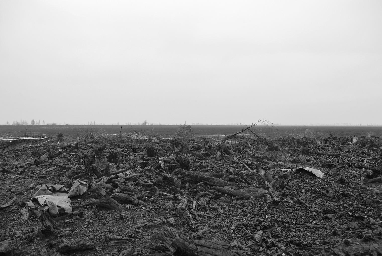 Отложенный апокалипсис: Чем грозит затопление шахт Донбасса