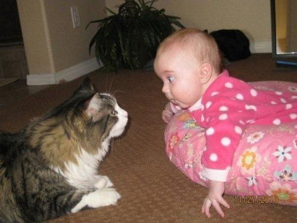 Картинки с животными и с детьми и с надписями смешные