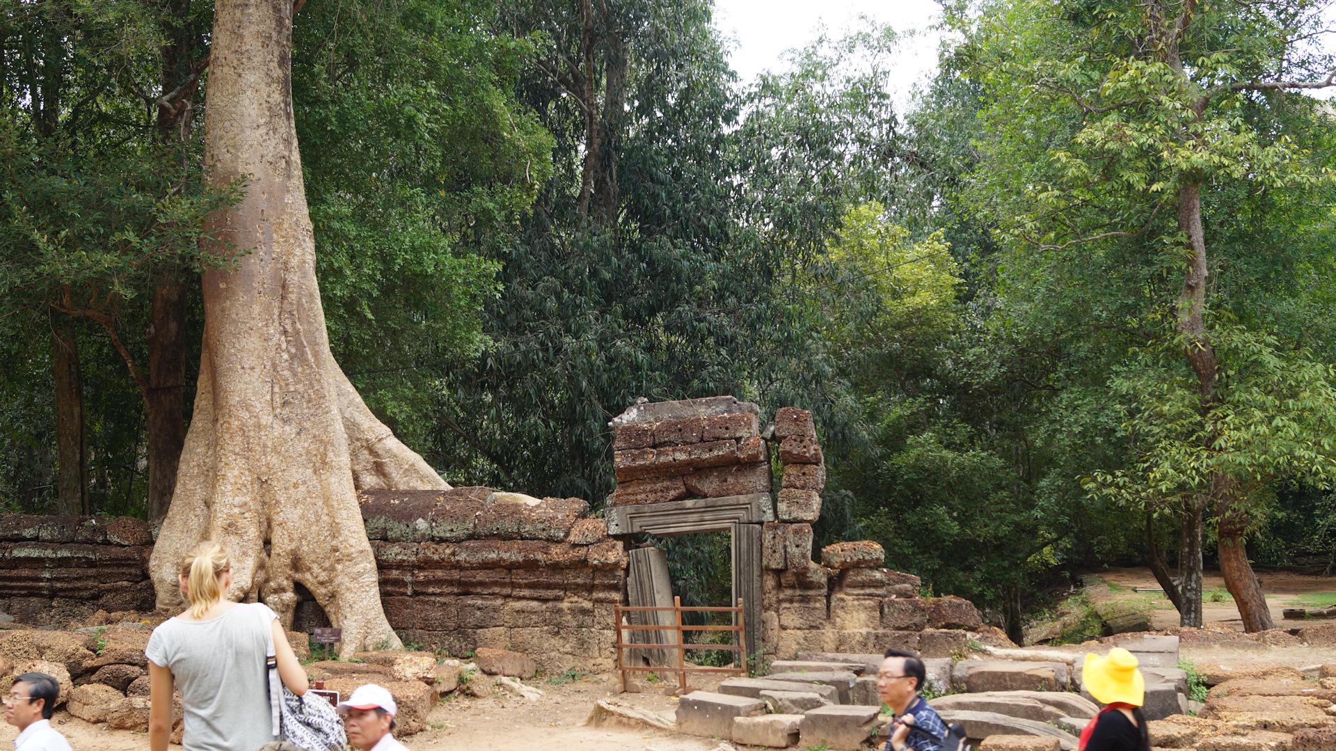прошкину блог фотографа путешественника о камбодже создания