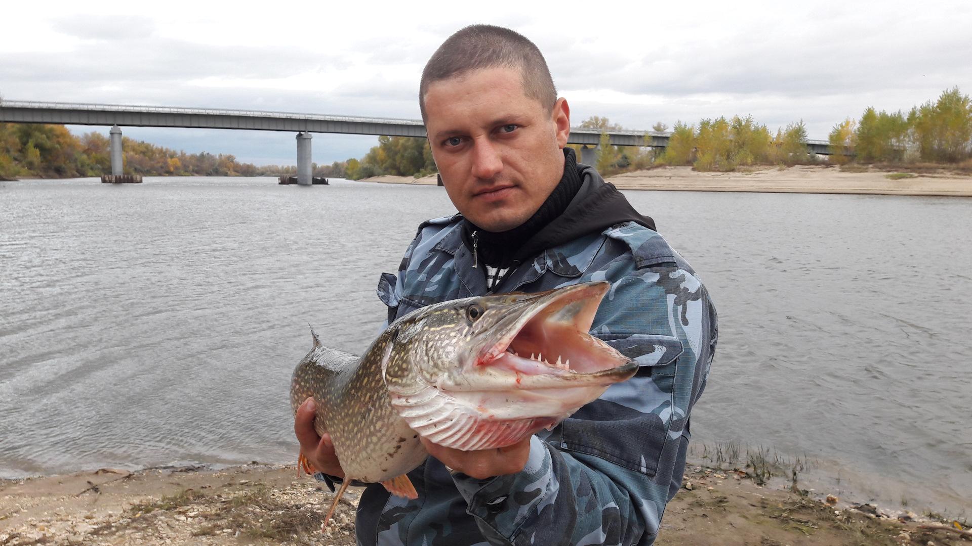 Платная рыбалка в Волгоградской области