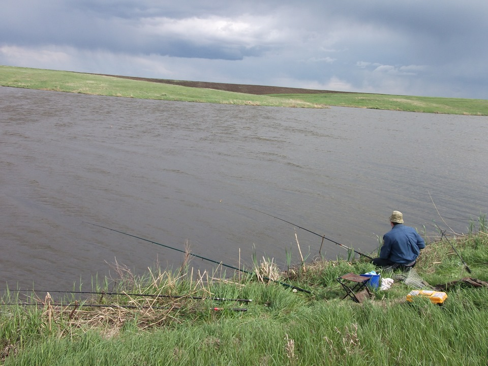 рыбалка на толстолоба и белого амура видео
