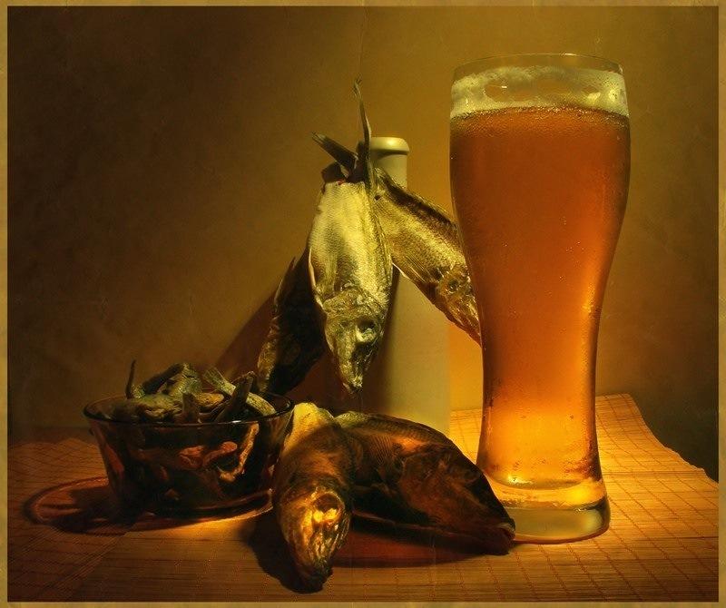 Стиле, рыба с пивом картинки прикольные