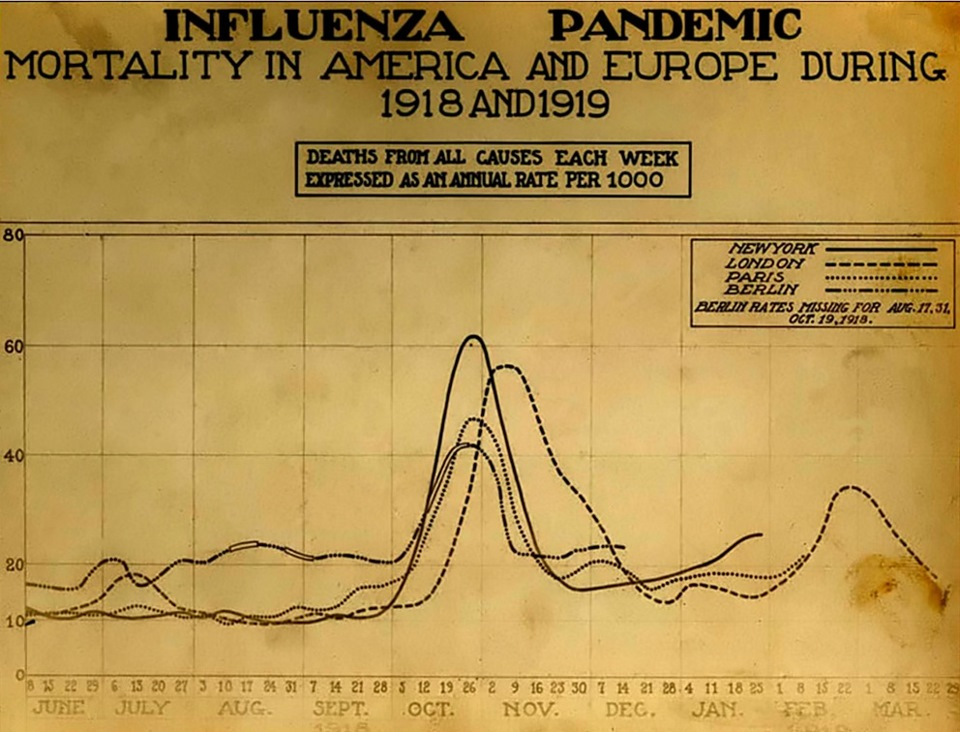 an analysis of the 1918 influenza pandemic and the hidden secrets of a mass murderer
