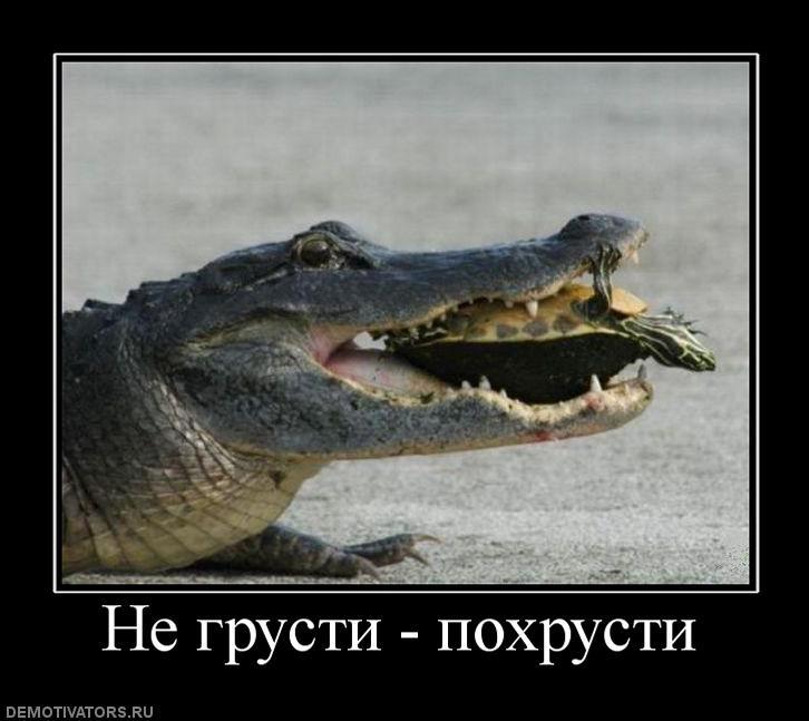 Смешная картинки не грусти