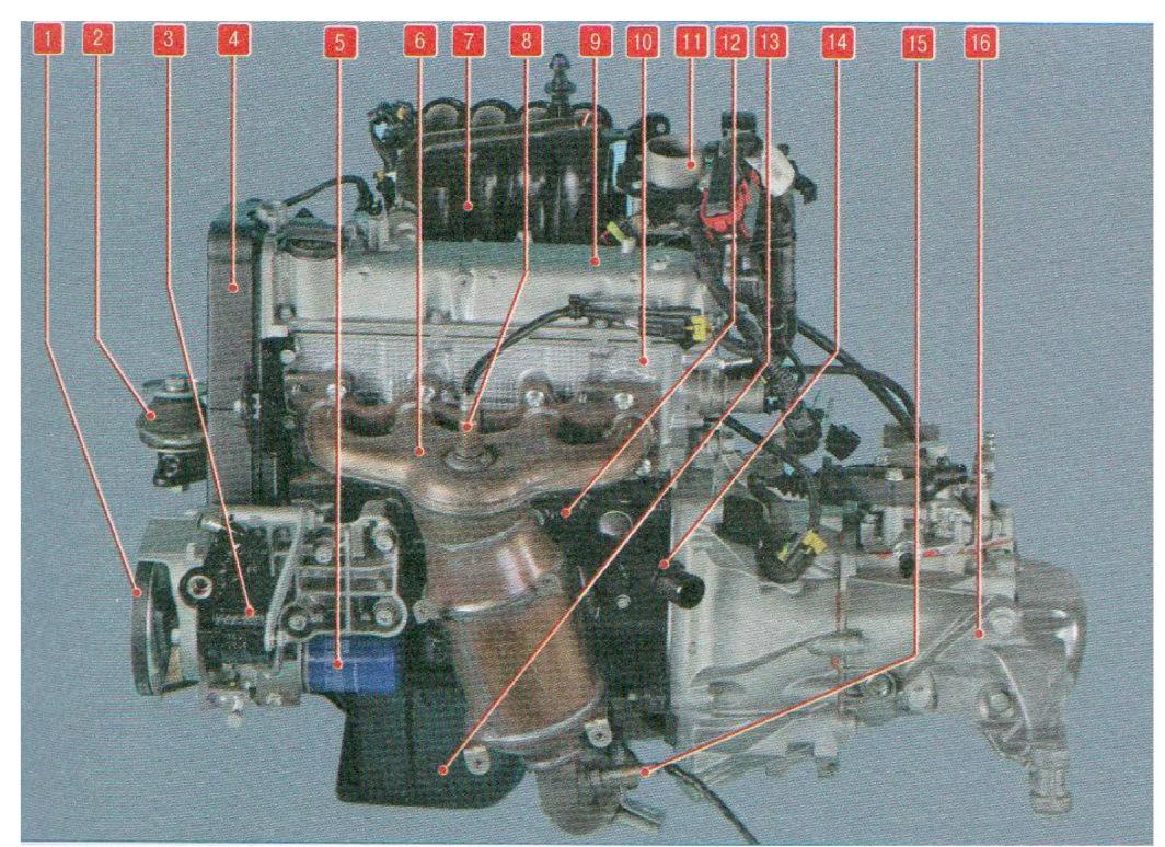 Fine Fiat Albea Wiring Diagram Basic Electronics Wiring Diagram Wiring 101 Cularstreekradiomeanderfmnl