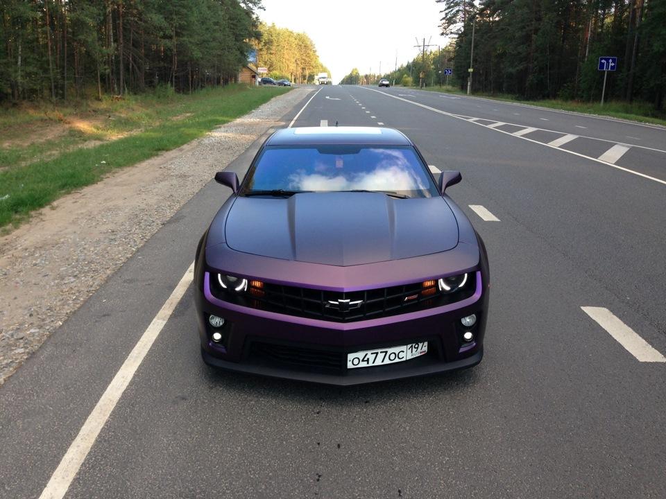 Цвет фиолетово черный
