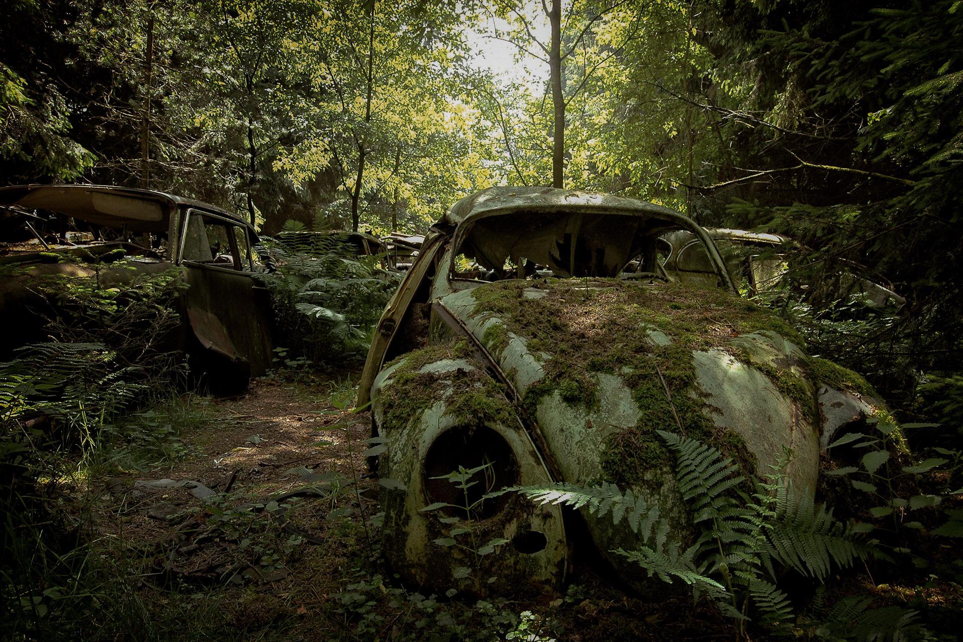 ствол поиск машины по картинке конце апреля начале