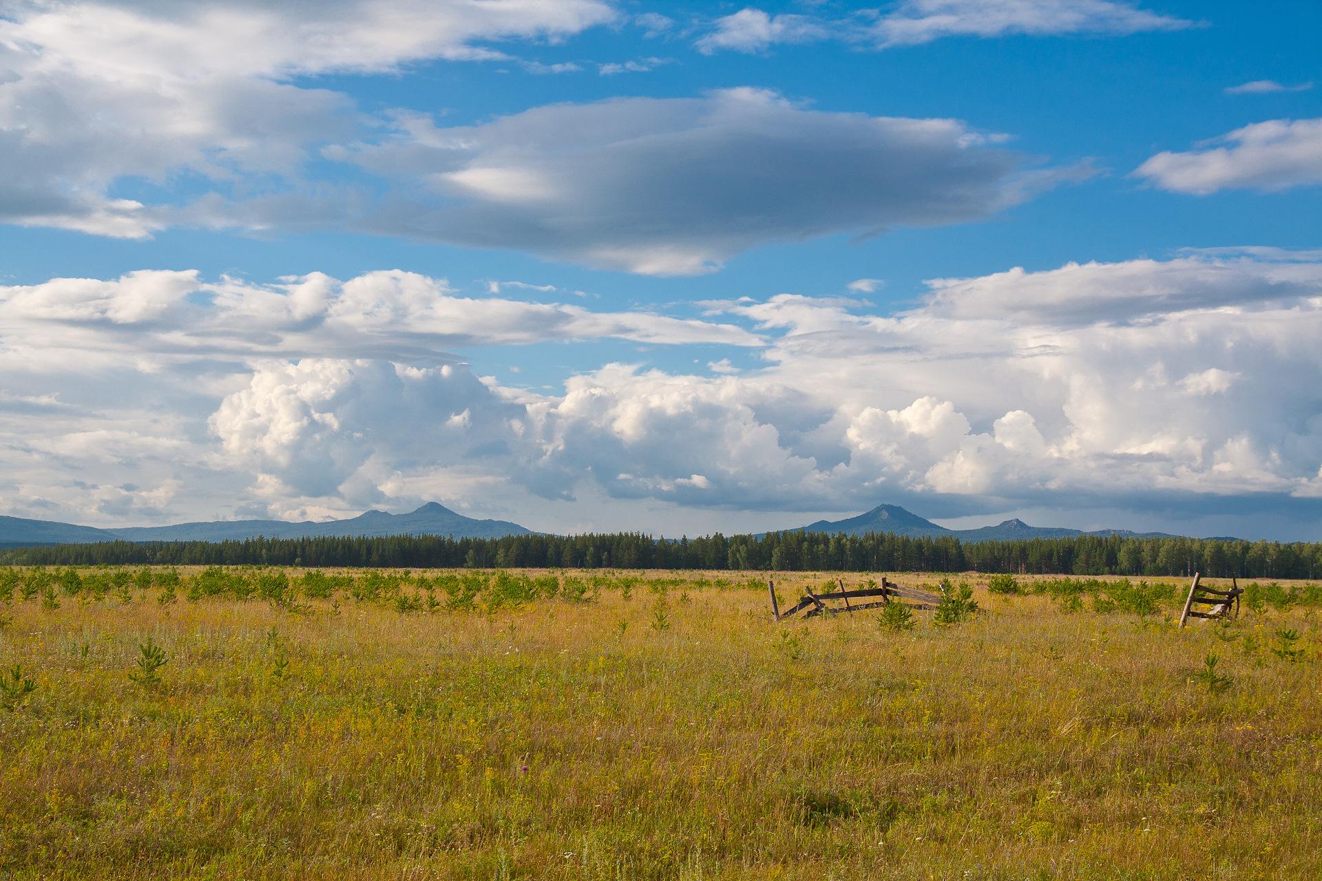 вашей жизни башкирское редколесье фото домрачева планирует