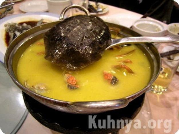 Как сделать суп из черепахи своими руками