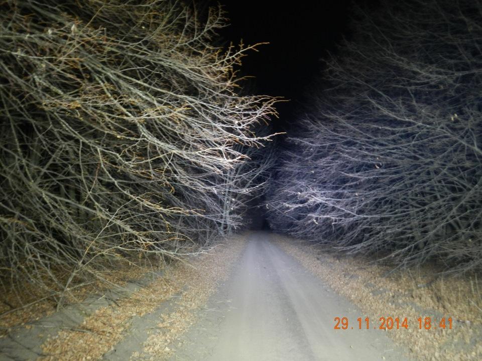 светодиодная балка на крыше УАЗ в лесу