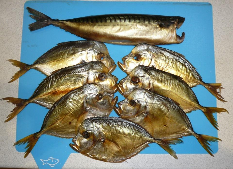 фото рыбка к пиву