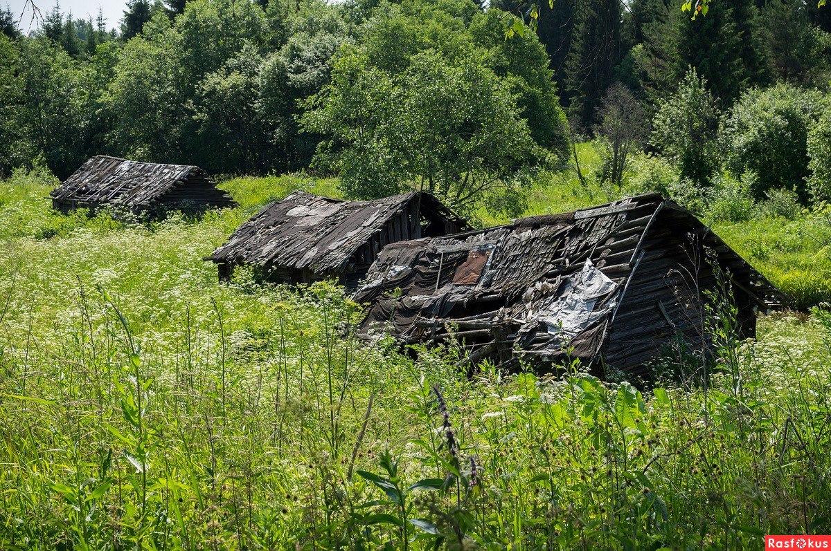 изготовления радиодеталей вымирающие деревни фото горбатов молодой