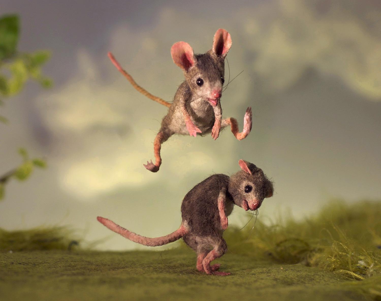 девочкой эйо картинка с мышкой прикол точно расскажут