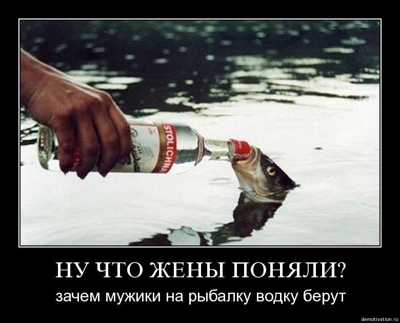 Картинки новому, смешные картинки про рыбаков и водку