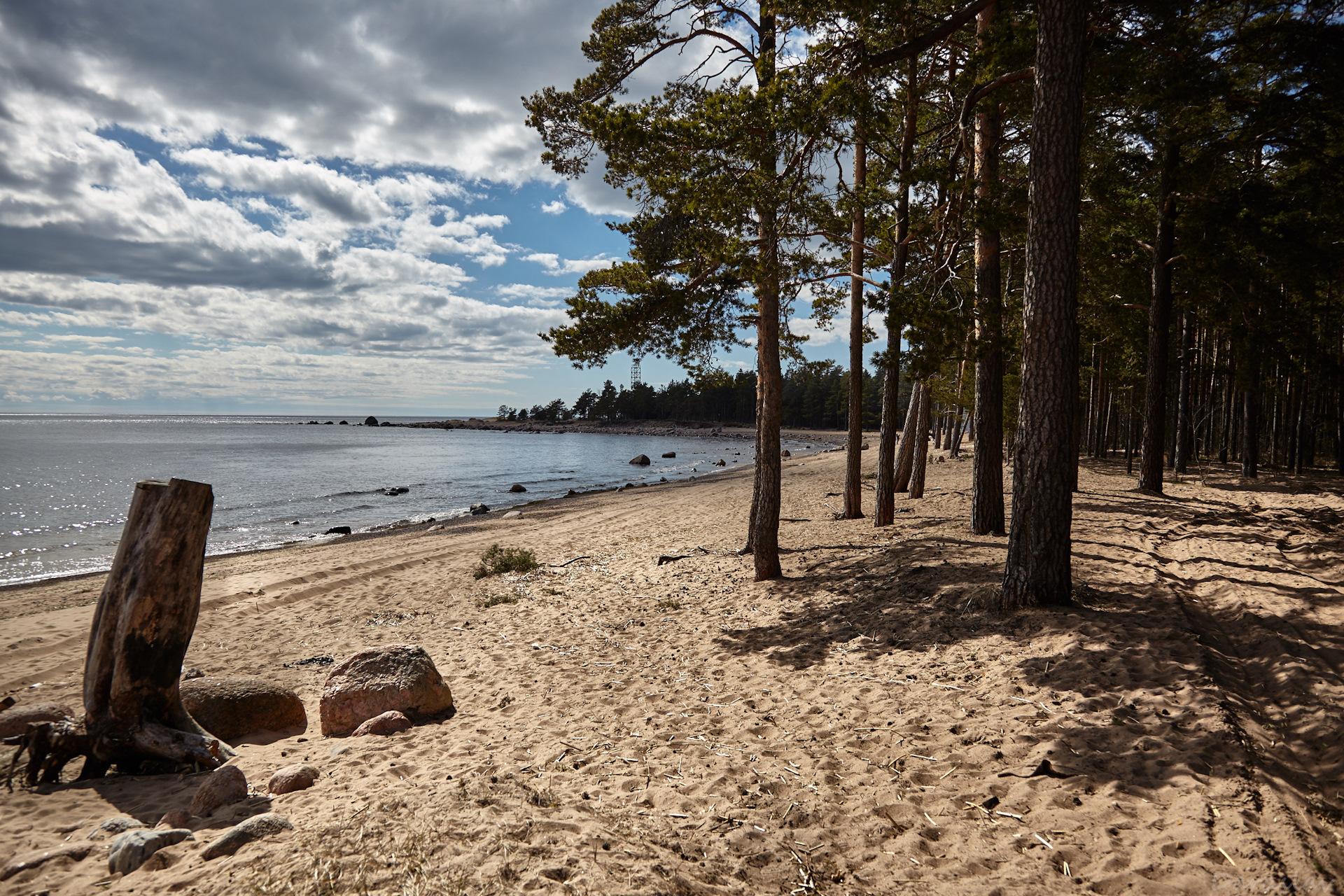 Стеклянный пляж во владивостоке фото темноволосая