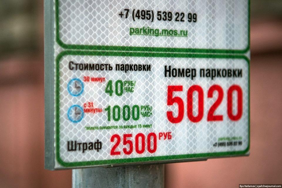 шлюха из питера за час 1000 рублей