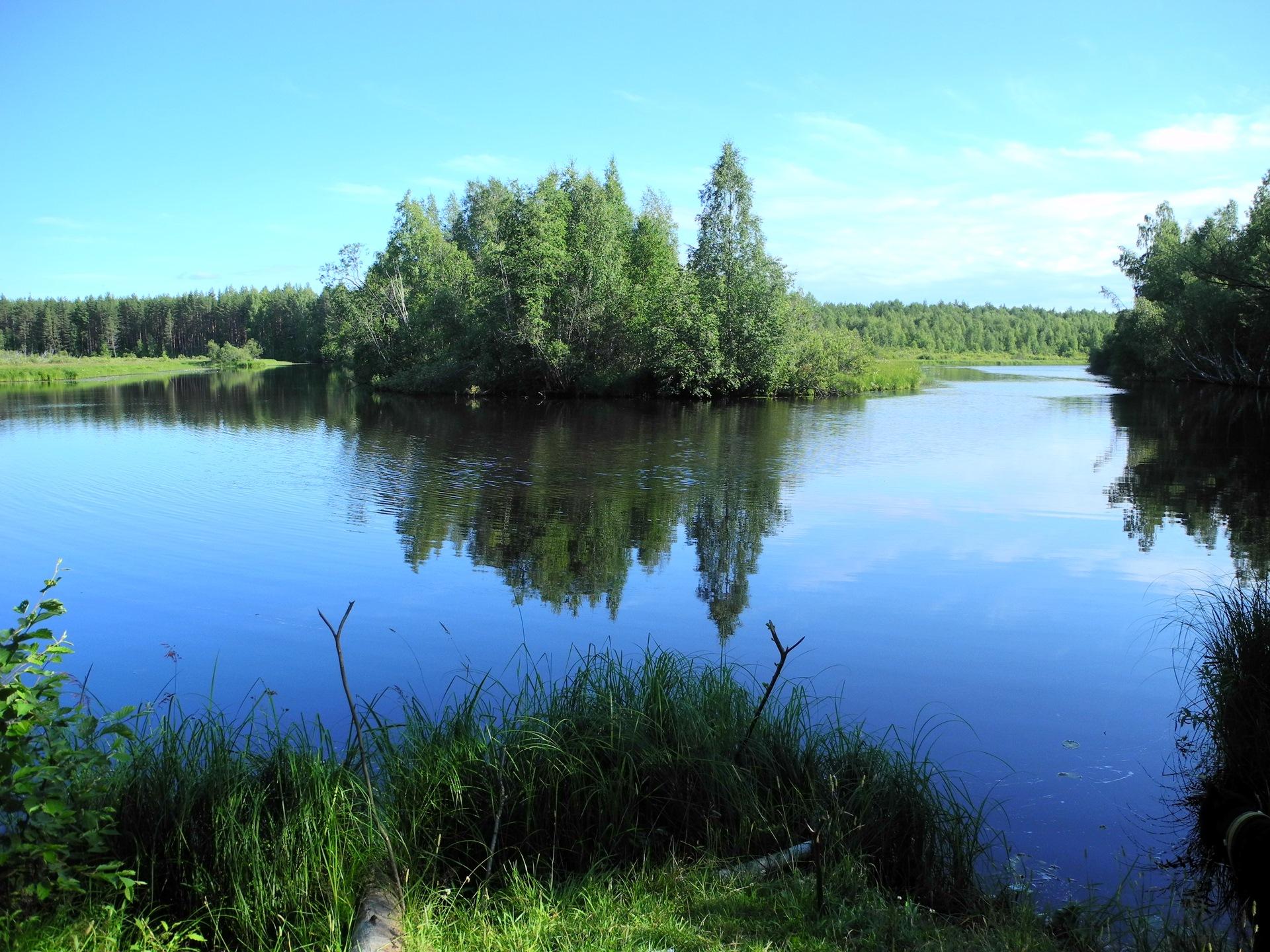 фото реки черной карелия касается