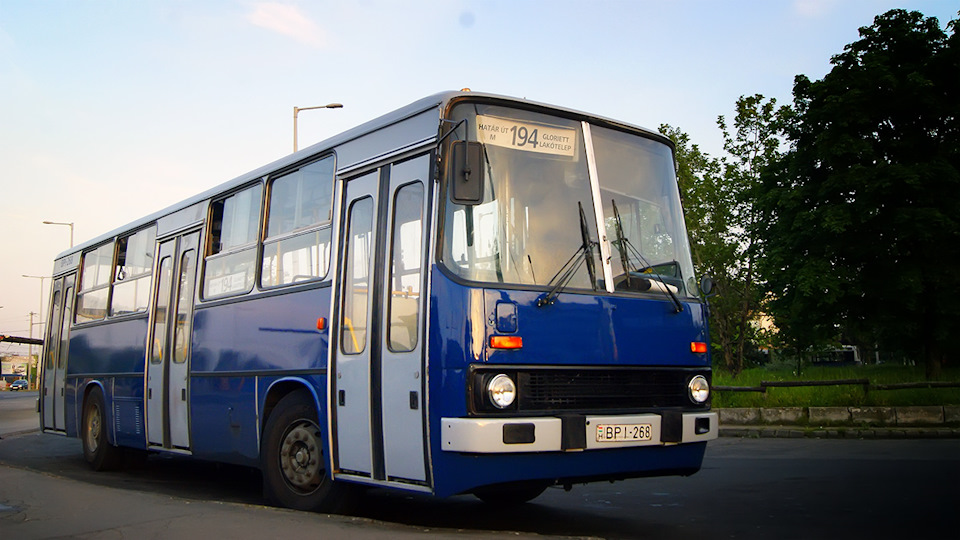 Основу парка одиночных автобусов продолжает составлять классический Ikarus-260. Правда, здесь все машины ещё с завода оснащены автоматическими коробками передач — производства ZF, Praga и Voith.
